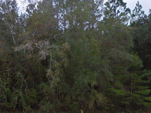 Madison County, Florida $10,000 Neg : Lee : Madison County : Florida