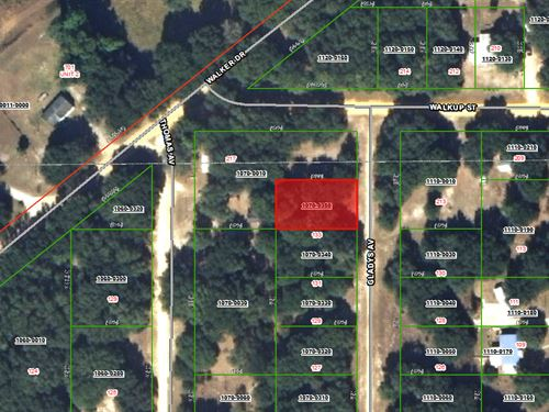 Land For Sale $99 Down, 100/Mo : Interlachen : Putnam County : Florida