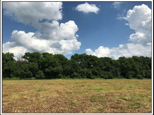 5 Acre Building Lot In New Albany : New Albany : Delaware County : Ohio