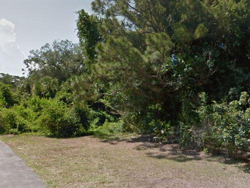 Okeechobee Co, Florida $50,000 Neg : Okeechobee : Florida