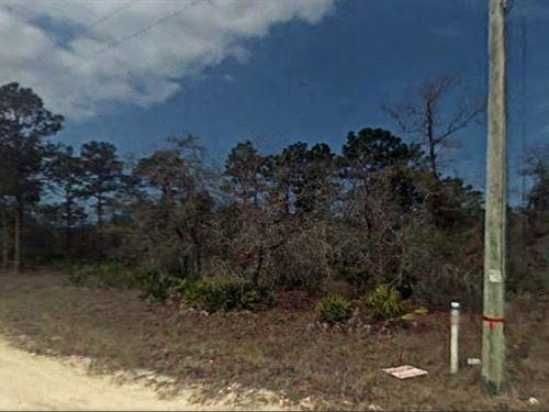 Hernando County, Florida $20,000 : Weeki Wachee : Hernando County : Florida