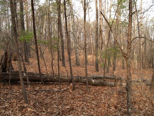 5 Acres Residenital Building Lot In : Cleveland : Pickens County : South Carolina