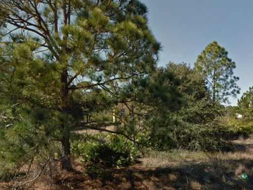 Lee County, Florida $16,000 Neg. : Lehigh Acres : Lee County : Florida