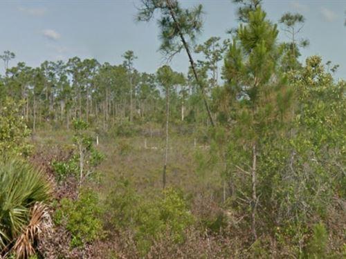 Martin County, Florida $35,000 : Indiantown : Martin County : Florida