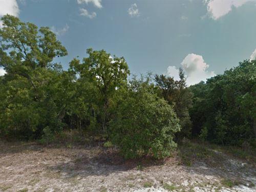 Hernando County, Fl $69,900 Neg. : Spring Hill : Hernando County : Florida