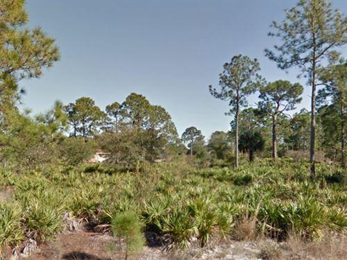 Lee Co, Fl $35,000 Neg. Both : Lehigh Acres : Lee County : Florida