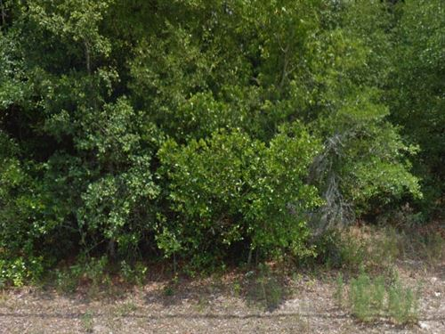 Cirtrus County, Florida $15,000 : Inverness : Citrus County : Florida