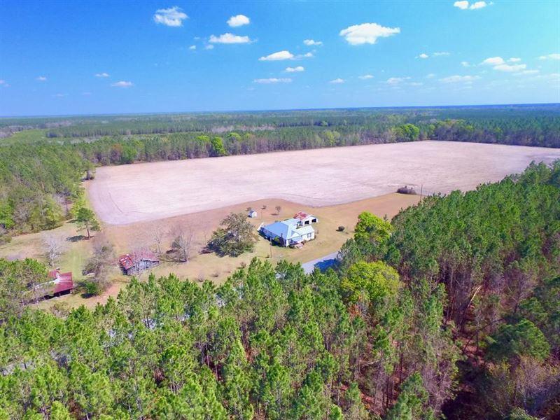 12 Acres On Grantham Rd : Jesup : Wayne County : Georgia