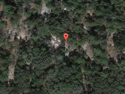 Marion County, Florida $40,000 Neg. : Fort McCoy : Marion County : Florida