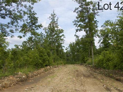 Missouri, Shannon County : Birch Tree : Shannon County : Missouri