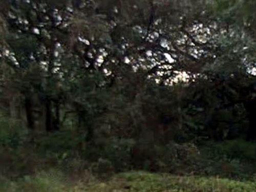 Pasco County, Florida $19,995 Neg : Spring Hill : Pasco County : Florida