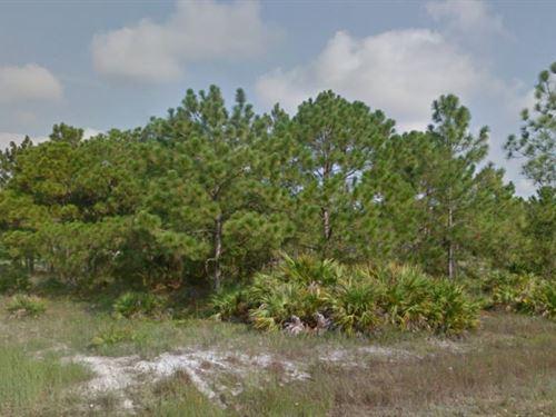 Lee County, Florida $22,000 : Lehigh Acres : Lee County : Florida