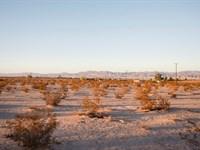 Insane Offer. Plus Water And Power : Twentynine Palms : San Bernardino County : California