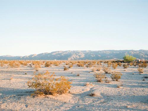 Escape The Grind Of The City : Twentynine Palms : San Bernardino County : California