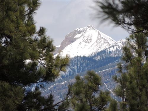 Martinez Mountain Estates, Lot 45 : Pagosa Springs : Archuleta County : Colorado