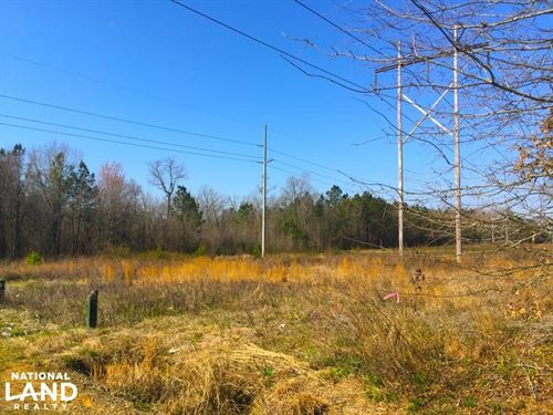 Hartsville Small Acreage Homesite : Hartsville : Darlington County : South Carolina