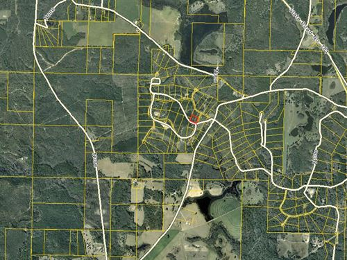 Vacant Acreage In Westville : Westville : Holmes County : Florida