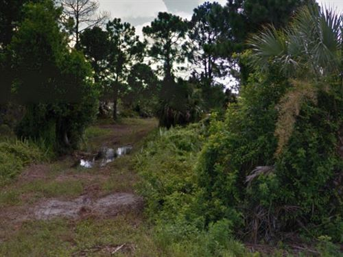 Lee County, Florida $9,000 : Lehigh Acres : Lee County : Florida