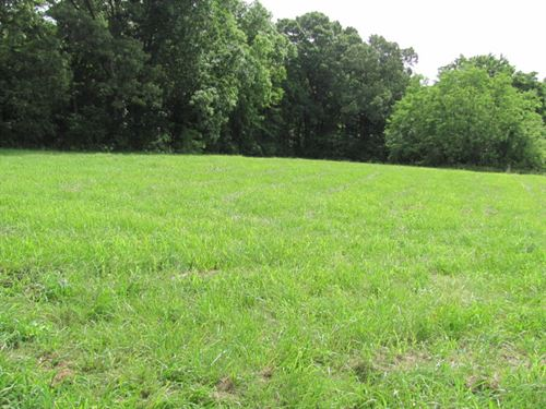 1.7 Acre Lot At End Of Cul-De-Sac : McKenzie : Carroll County : Tennessee