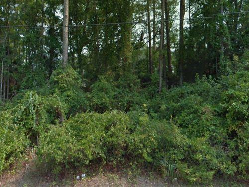Flagler County, Florida $27,000 Neg : Palm Coast : Flagler County : Florida
