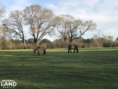 Marietta Road Livestock Farm & Home : Brewton : Escambia County : Alabama