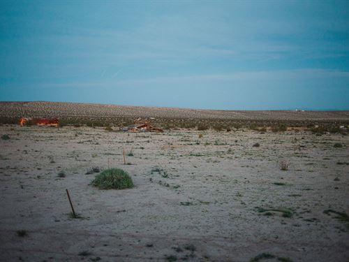 You Must See These Mountain Views : Joshua Tree : San Bernardino County : California