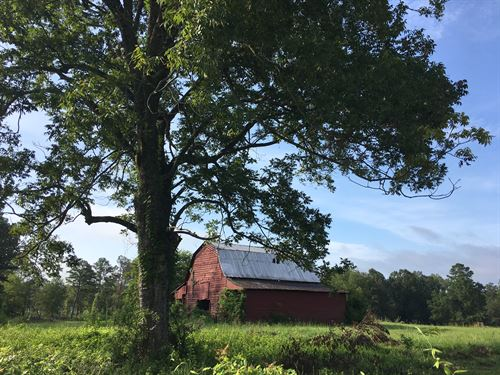 Reduced $10,000 - 4 Acres And Barn : Ashville : Saint Clair County : Alabama