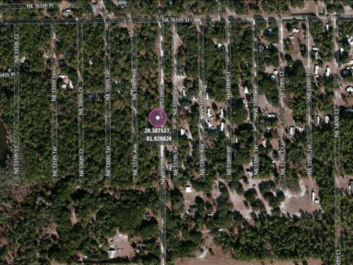 .11 Acres In Fort McCoy, FL : Fort McCoy : Marion County : Florida
