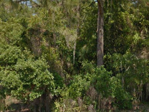Hernando County, Fl - $40,000 Neg : Spring Hill : Hernando County : Florida