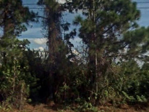Lee County, Florida $6,999 Neg : Lehigh Acres : Lee County : Florida