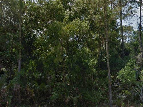 Sarasota Co, Florida $115,000 Neg : North Port : Sarasota County : Florida