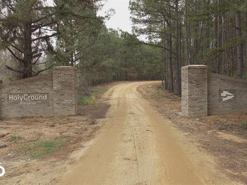 Holy Ground Plantation River Lots : Lowndesboro : Lowndes County : Alabama