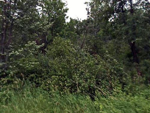 Barron Co, Wisconsin $20,000 Neg. : Birchwood : Barron County : Wisconsin