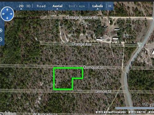 Walton County, Florida $92,500 : Defuniak Springs : Walton County : Florida