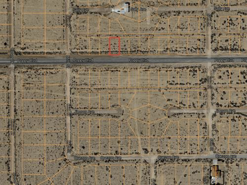 .14 Acres In California City, CA : California City : Kern County : California
