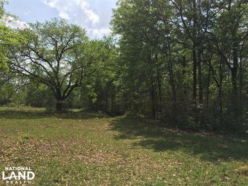 Old Still Home Site : Citronelle : Washington County : Alabama
