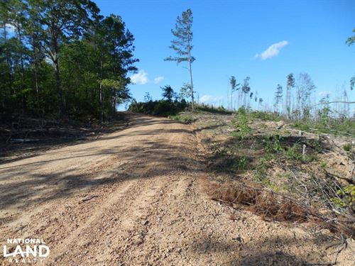 Archie Byrd 20 Acre Tract : Meadville : Franklin County : Mississippi