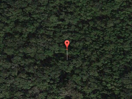Volsuia County, Fl - $33,000 Neg : Oak Hill : Volusia County : Florida
