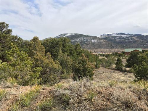 5891466 Build Your Dream Mountain : South Fork : Rio Grande County : Colorado
