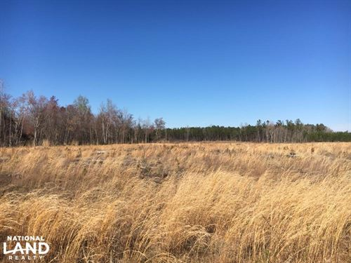 Duford Secluded Home Site Lot 7 : Nichols : Horry County : South Carolina
