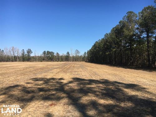 Duford Secluded Home Site Lot 5 : Nichols : Horry County : South Carolina