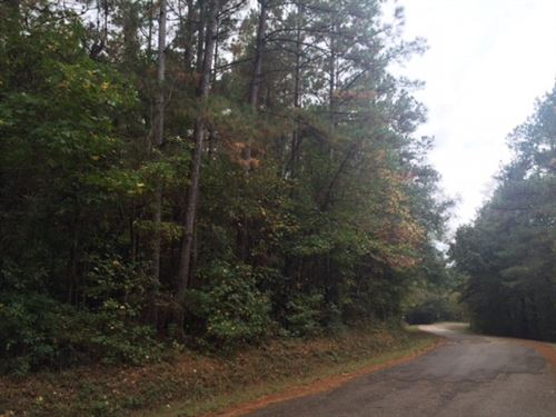 Hunting Land Timber For Sale Frankl : McCall Creek : Franklin County : Mississippi