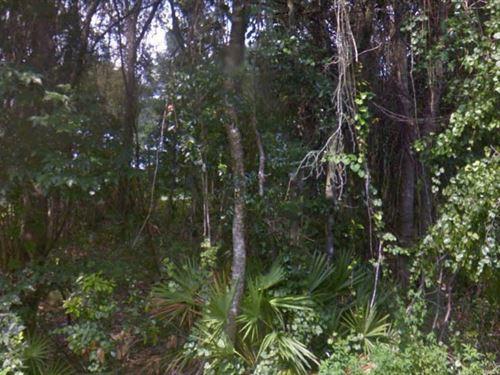 Marion, Florida $16,000 : Ocala : Marion County : Florida