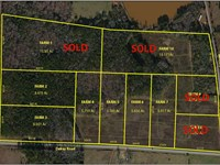8.5 Acre Wooded Home Site : The Rock : Upson County : Georgia