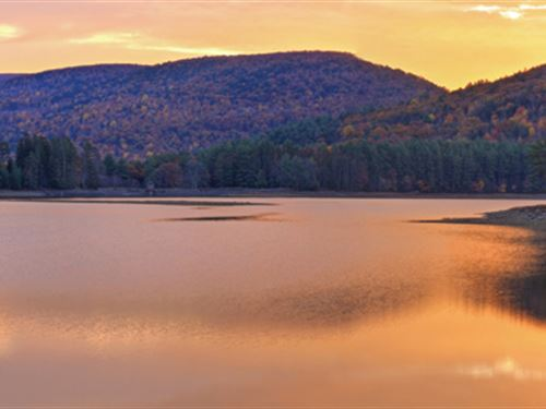 Lakefront Estate Only $49,900 : Seneca : Oconee County : South Carolina