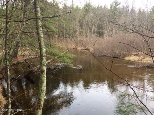 Pere Marquette River Splendor : Baldwin : Lake County : Michigan