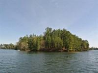 Mls 163482 - Big Ripley Island : Minocqua : Oneida County : Wisconsin
