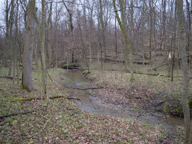 Cr 194 - 6 Acres : Fredericktown : Morrow County : Ohio