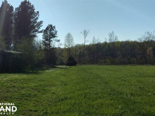 Bear Creek Land : Bear Creek : Chatham County : North Carolina