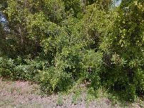 Volusia County, Florida $7,500 : Orange City : Volusia County : Florida